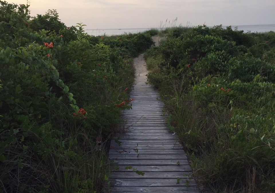 The Path – A Journey of Gratitude