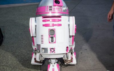 R2-KT: A Geek Family Story